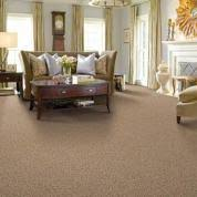 wall to wall carpet. Wall-to-Wall Carpet Buying Guide Wall To