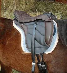 torsion treeless saddle. another nickers treeless saddle dealer: http://www.ridetreeless.com/ torsion i