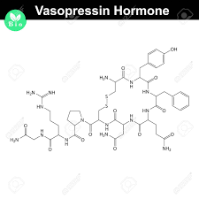 what is structural formula vasopressin hormone 2d structural formula vector model of molecule