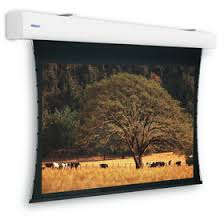 <b>Projecta</b> Tensioned <b>Elpro Large</b> electric projector screen