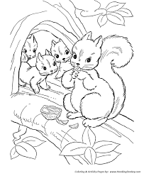 Small Picture Wild Animal Coloring Pages Squirrel family Coloring Page and