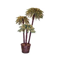 Lighted Christmas Palm Tree Shop 6 Ft Potted Potted Caribbean Palms Pre Lit Artificial