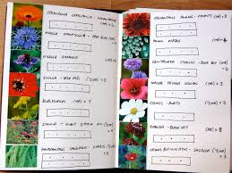 Small Picture Flower Garden Layout Planner Garden Design With Flower Garden