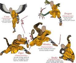 Dragon Kung Fu Barca Fontanacountryinn Com