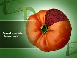 Powerpoint Templates Food Genetically Modified Foods Powerpoint Template Backgrounds 04290