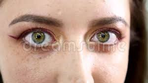 beauty woman eye makeup closeup beautiful holiday make up for brown eyes false eyelashes night party