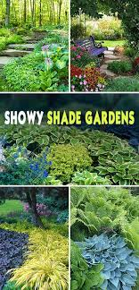 Small Picture Showy Shade Gardens Gardens Plants and Yards