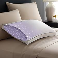 Pacific Coast Double DownAround Firm Pillow 300 Thread Count 550 Fill Power  Down & Resilia Feathers