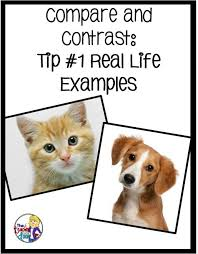 best compare and contrast ideas compare and 6 tips to teach compare and contrast