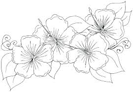 Coloring Pages Of Flowers And Butterflies Predragterziccom