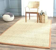 jute chenille rug review coffee and cream pottery barn cheni