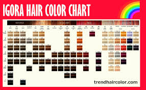 Essensity Colour Chart 48 Elegant The Best Of Igora Royal Hair Color Chart Home