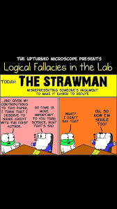 what s the of the fallacy where you present a silly argument a great review of logical fallacies can be found here