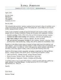 Sample Cover Letter Monster Branding Proposal Sample 644 835 Sample Proposal For