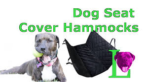 six best dog seat cover hammocks to protect your car