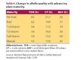 happy horse healthy planet maturity of alfalfa