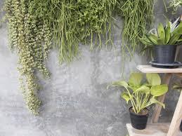 Sie vermitteln ein gefühl von naturverbundenheit und beeinflussen damit die hausfassade zunehmend. Krautertreppe Selber Bauen Und Optimal Bepflanzen