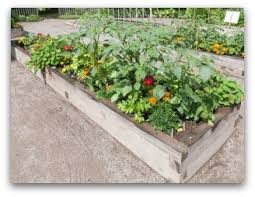 Small Picture Small Vegetable Garden Plans for Your Family