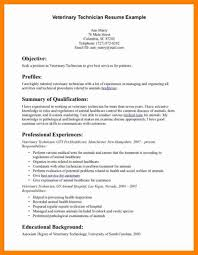 best 10 sample of resume ideas on pinterest sample of cover