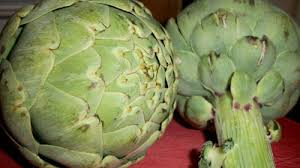 but the nutritional value of artichokes bined with their delicious and unique flavor should have been enough to convince me this was a fear worth
