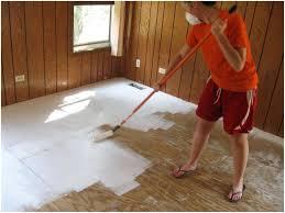 cat on wood floor hardwood floor cleaning nature s miracle hardwood floor hydrogen peroxide hardwood