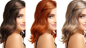 Perspicuous Guy Vs Girl Color Chart Hair Color Matching
