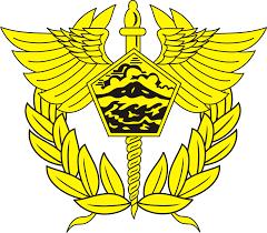 Image result for indonesia customs bea cukai