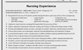 Writing A Nursing Resume Delectable Nursing Resumes Template Simple Resume Examples For Jobs