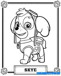 Image Result For Nick Jr Coloring Pages Toddler Activies