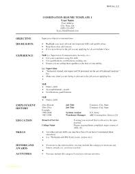 Basic Resume Template Download Interesting Chronological Resume Template Inspirational Example Cosy Of Sample