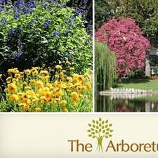 half off arboretum botanic garden membership los angeles county arboretum and botanic garden groupon
