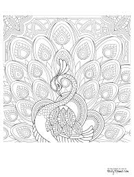 Peacock Adult Coloring Page More