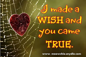 Cute Valentines Quotes Adorable I Made A Wish And You Came True