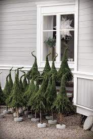 Diy Grüne Zweige Mit Nadeln Kopfüber An Einen Ständer Mit