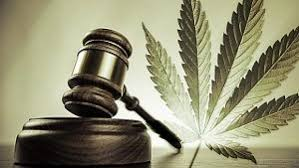 legalizing marijuana essay pros and cons com essay on legalizing marijuana a dangerous drug or a powerful cure