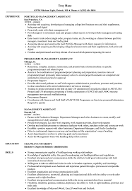 Management Assistant Resume Samples Velvet Jobs