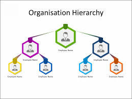 Ppt Slide Organization Chart 3 Level Multicolor