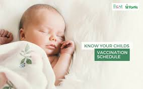 Total Vaccination Chart Of A Baby In India Vaccination Chart For Babies In India 2019 Baby