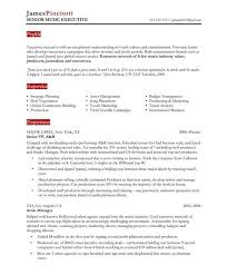 Resume Standard Format Best Pin By Topresumes On Latest Resume Pinterest Standard Resume