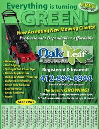 lawncare ad lawn care flyers my first advertisement craigslist and beyond lawn