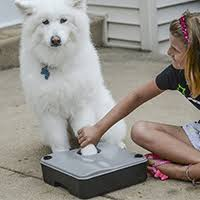 Best <b>Dog Paw</b> Cleaners - Top 5 Ranked & Compared - eRanker