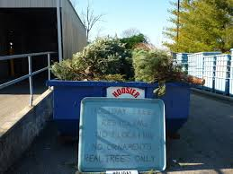 Ask Renee: Recycling Christmas trees in Indianapolis