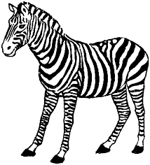 Small Picture Free Zebra Coloring Pages