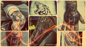 значение тату саблезубый тигр смысл история фото эскизы