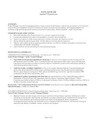 Sample Resume Summary Awesome Example Retail Store Manager