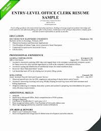 Data Entry Officer Sample Resume Interesting Resume Resume Summary Examples Entry Level Economiavanzada