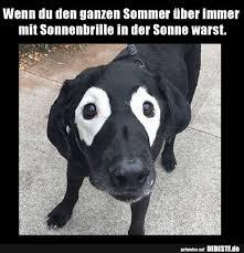 Wenn Du Den Ganzen Sommer über Immer Mit Sonnenbrille In Der Sonne