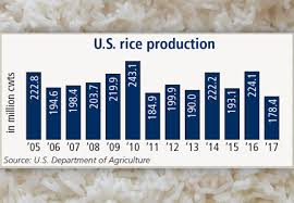 Rough Rice Price Chart U S Rice Prices Soar Amid Sharply Lower Production Food