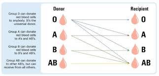 Blood Types And Donation Chart Abo Blood Donor Chart Bedowntowndaytona Com
