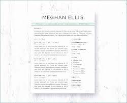 Resume Template For Word 2010 Gorgeous Resume Template Ms Word 48 Easy Template Example